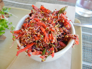 Organic Works - beet, rutabaga, and sprout salad